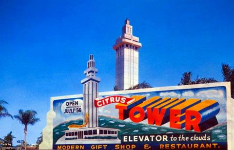 1956 - Famed Citrus Tower of FloridaPast Opening July 1st 1956